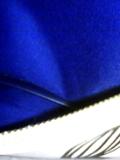InBlue.jpg